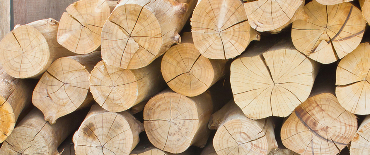 Indian Wood Suppliers Wood Exporters India Foreign Wood